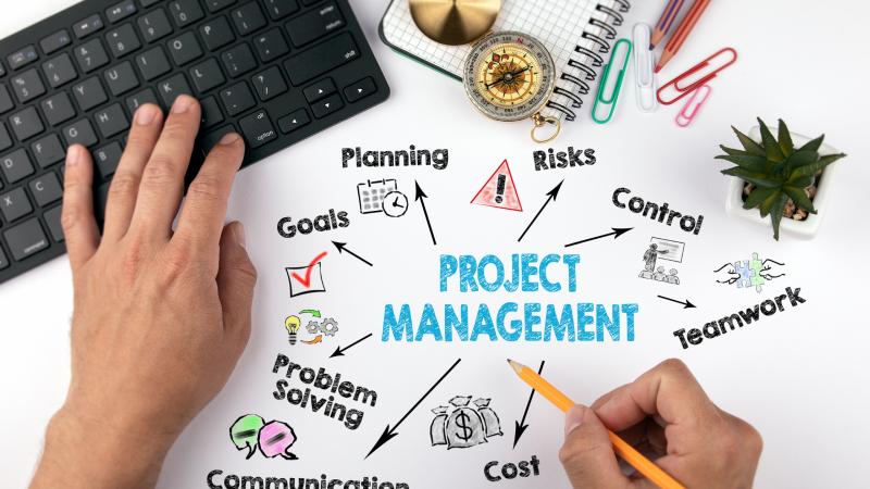 Projektmanagement: organisierte Komplexität
